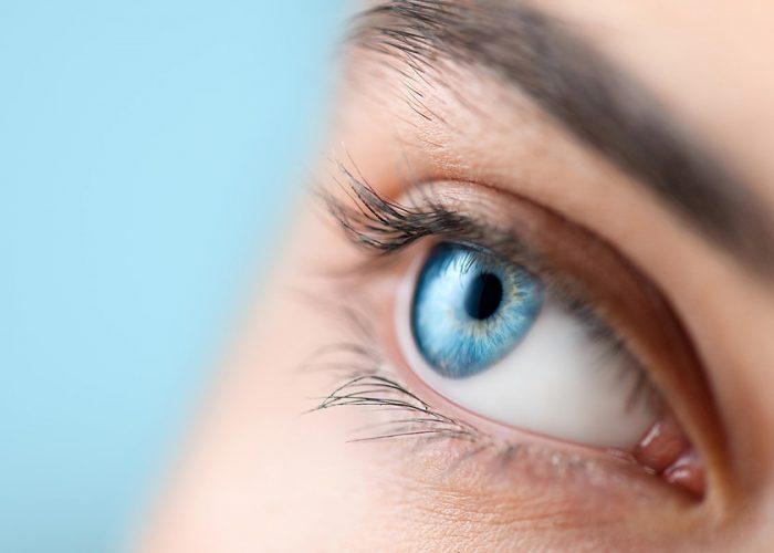 Beautiful human eye close-up. Young Woman Blue one eye macro shoot. Macro Closeup eye looking up, isolated on white background. Eyelashes, eyebrows closeup