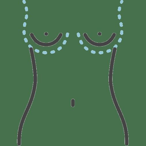 עיצוב הגוף